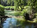 Zpola zastíněné a zpola prosluněné levobřežní rameno řeky Moravy.