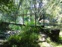 Lávka přes levobřežní živé rameno řeky Moravy.