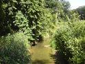 Při první návštěvě se ve změti spousty slepých ramen řeky Moravy jen stěží vyznáme.