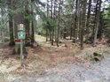 Jeden z lesních vstupů do chráněného území po lesní cestě od silnice.