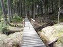 Dřevěný chodník naučné stezky vede přes Vřesovištní potok.