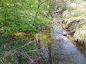Střední odtok z rybníka Datlík pokračuje coby potok Biřička do rybníka Roudnička.