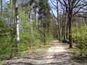 Není to obyčejná lesní cesta, je to planetární stezka.