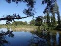 Západní část rybníka Louňov.