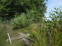 Drátěný plot vedoucí do rybníka Spáleniště.