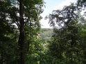 Průzor mezi stromy až k hladině Vltavy.