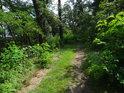Cesta na jižním okraji chráněného území.