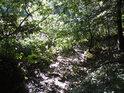 Vyschlé koryto potoka na jihozápadě.