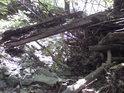 Detail z koryta vyschlého potoka.
