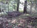 Lesní zvěř tu má kam zajít.