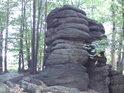 Zkamenělá rodina zůstala uprostřed bukového remízku.