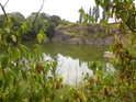 Zelená se nejen listí, ale též voda.