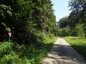 Úřední cedule ve stínu lesa u zpevněné cesty podél Maršovského potoka.