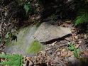 Sluncem zalitý kámen v jinak spíše temném prostředí bukového lesa byť na jihovýchodním svahu.