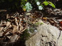 Plastový kelímek na kameni stál...