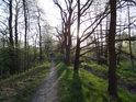 Pěšina na severní hrázi rybníka Štěpán při zvedajícím se Slunci, v pozadí železniční trať.