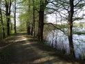 Oblouk hráze na jihovýchodní části rybníka Štěpán.