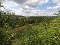 Křovinatá část chráněného území.