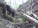 Madlo z kořene, co obrostl mechem, umožní bezpečnější zdolání nejisté cesty.