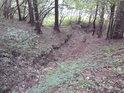 Spodní část krátkého dočasného potoka ve slatinské stráni.