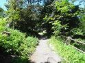 Cesta pro pěší v horní části chráněného území.