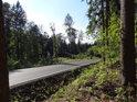 Výhled z lesa na silnici Koberovy – Vranové.