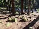 Pískovcové balvany po lese rozseté.