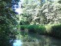 Potok Trotina protéká stejnojmenným chráněným územím.