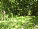 Lesní cesta tvoří východní hranici přírodní památky U přejezdu.