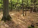 Technicky dokonalé, ne však příliš přirozené zalomení lesního korýtka.