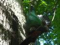 Model slepice. Tomuto místu se říká U slepice na památku události, kdy zde revírník Petr Orlich ze Ždánic nalezl slepici, která zde v dutém stromě vyseděla kuřátka.