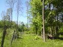 Drátěný plot obory chrání mladé porosty před okusem od větší zvěře.
