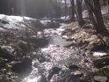 Sluneční paprsky si hladí hladinu Záhorského potoka, jako by jim zcela patřila a vytváří u toho nádherné scenérie.