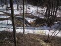 Tok Záhorského potoka se ještě zdaleka ne všude vymanil z ledového sevření.