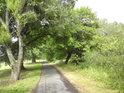 Přístupová cesta od Vidnavy, která dále vede do polské obce Łąka.