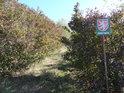 Úřední cedule u barevného křoví a průchod dále do nitra chráněného území.