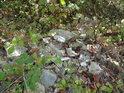 Rozbité skleněné dlaždice do přírody rozhodně nepatří, ale lidé, kteří si ničí přírodu kolem sebe jsou úplně všude.