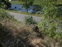 Řeka Svratka za silnicí pod Vírskou skalkou.