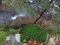 Strmý pohled přes mechy a mladý smrk shora na Nýznerovské vodopády.