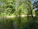 Přímý tok Moravy u Vrapače svědčí o tom, že řeka je zde regulovaná.