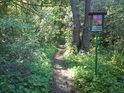 Takto začíná národní přírodní rezervace Vrapač, když s přiblížíme od města Litovel.