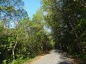 Silnice ve směru Klokočůvek – Spálov. Vpravo pak chráněné území.