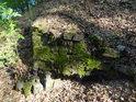 Náznaky vrásnění, listím a mechem schovávané.