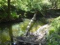 Přirozená lávka přes levobřežní slepé rameno řeky Moravy.