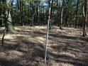 Vnější hraniční znak na samostatném kácejícím se kolíku moc smyslu mezi spoustou stromů nedává, ale co vlastně je na světě logické, že?