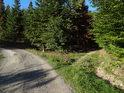 Jižní cíp chráněného území Zadní Hády.