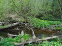 Nepřehledná vodní situace u odlehčovací stružky z rybníka Velká Kamenice do řeky Chrudimky.
