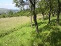 V dolní části chráněného území se nachází udržovaný sad.