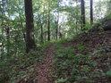 Pěšina v lesním svahu po vrstevnici.