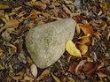 Osamělý valoun na polštáři z bukového listí.